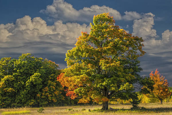 Photograph - Indian Summer by Randall Nyhof
