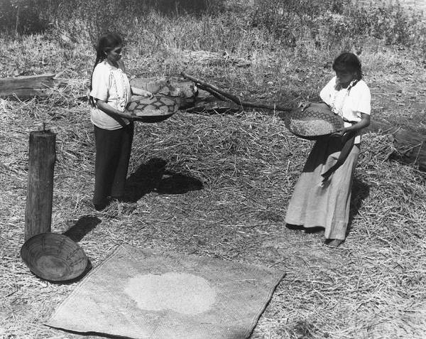 Photograph - Indian Women Winnowing Wheat by Underwood Archives Onia