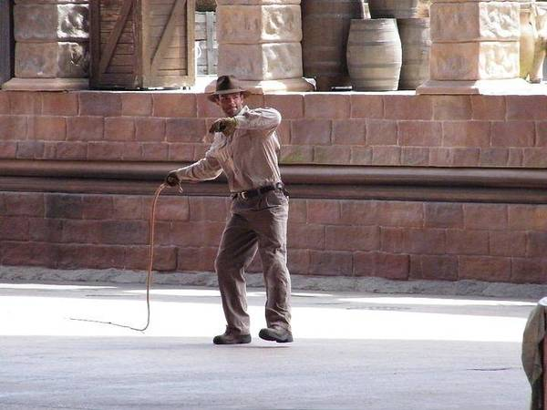 Photograph - Indiana Jones Whip by Ronda Douglas