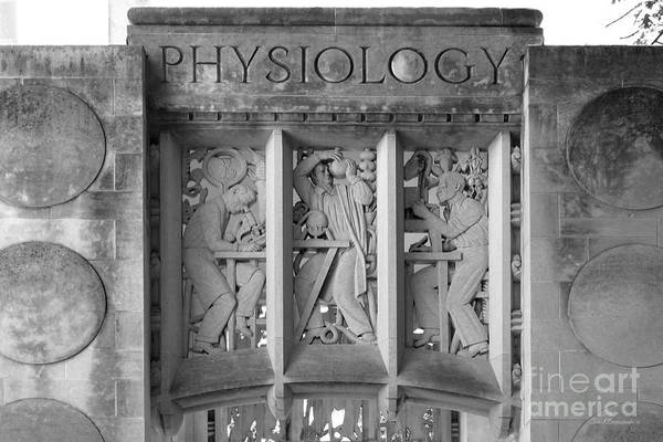 Photograph - Indiana University Myers Hall Physiology by University Icons