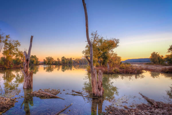 Photograph - Indiana Wetlands by Keith Allen