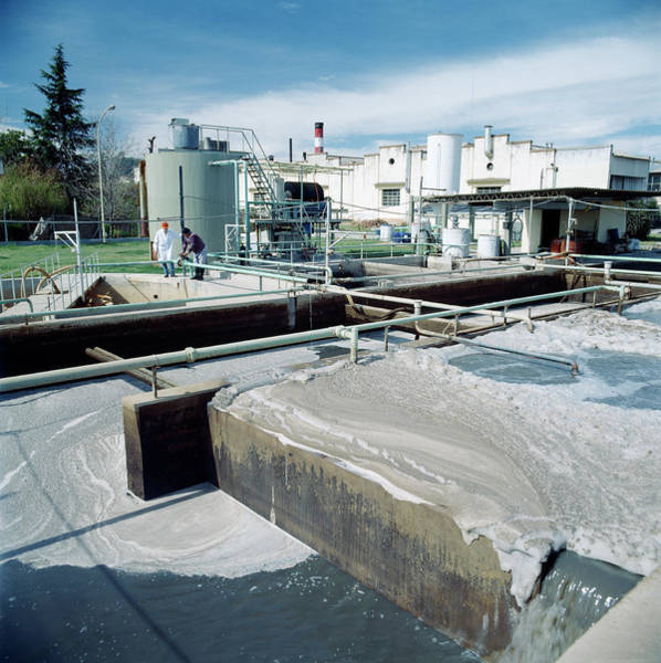 Foaming Wall Art - Photograph - Industrial Waste Treatment Plant by Steve Percival/science Photo Library