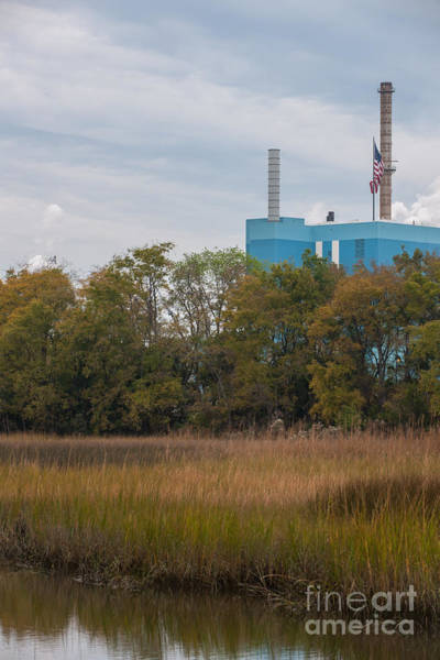 Photograph - Industry And Wetlands by Dale Powell