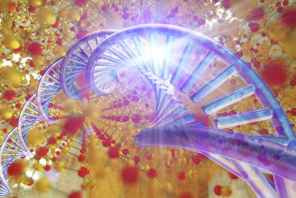 Storage Photograph - Information Storage In Dna And Silica by Alfred Pasieka