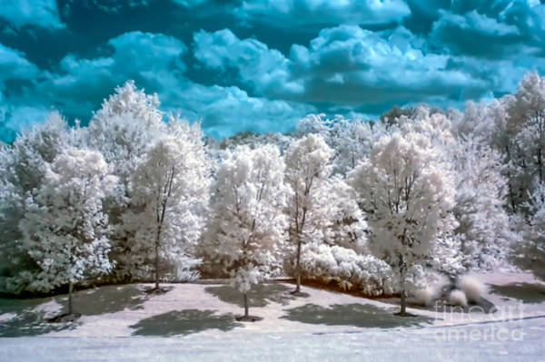 Photograph - Infrared Country by Anthony Sacco