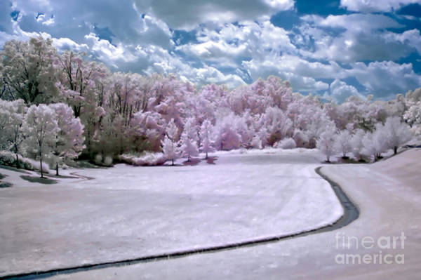 Photograph - Infrared Meadow by Anthony Sacco
