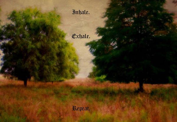 Photograph - Inhale by Marilyn Wilson