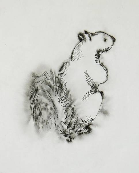 Wall Art - Painting - Ink Squirrel by Katherine Young-Beck