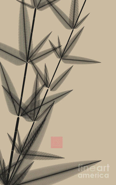 Stem Digital Art - Ink Style Bamboo Illustration In Black by L.dep