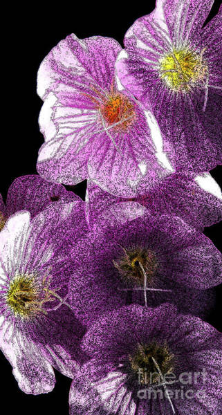 Photograph - Inked In Purple by Linda Shafer