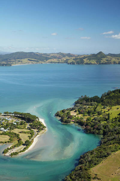 Foreshore Photograph - Inlet, Cooks Beach, Coromandel by David Wall