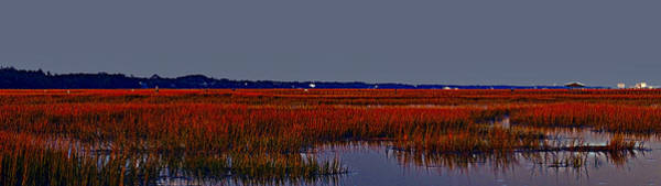 Photograph - Inlet Marsh by Bill Barber