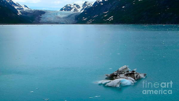Photograph - Inside Glacier Bay by Jacqueline Athmann