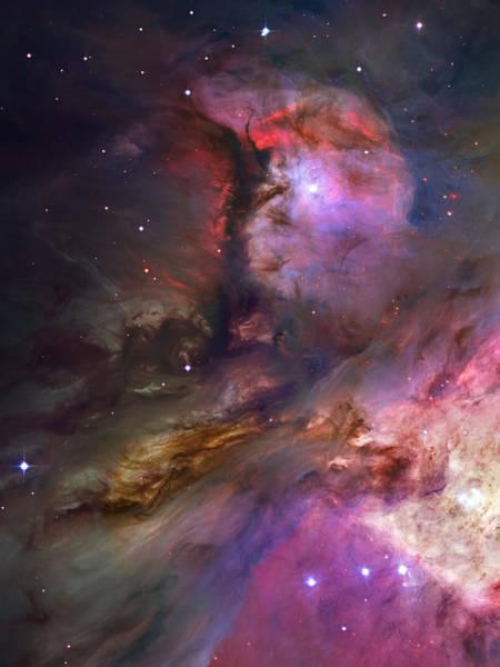 Wall Art - Photograph - Inside Orion by Ricky Barnard