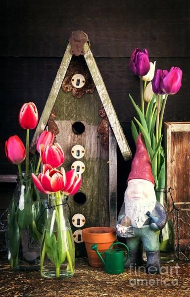 Cut Flower Photograph - Inside The Potting Shed by Edward Fielding