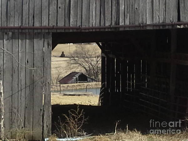 Photograph - Barn - Kentucky - Inside Treasure by Jan Dappen