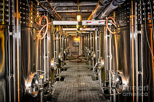 Wall Art - Photograph - Inside Winery by Elena Elisseeva