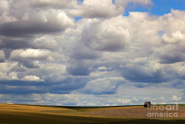 Wall Art - Photograph - Insignificant by Mike  Dawson