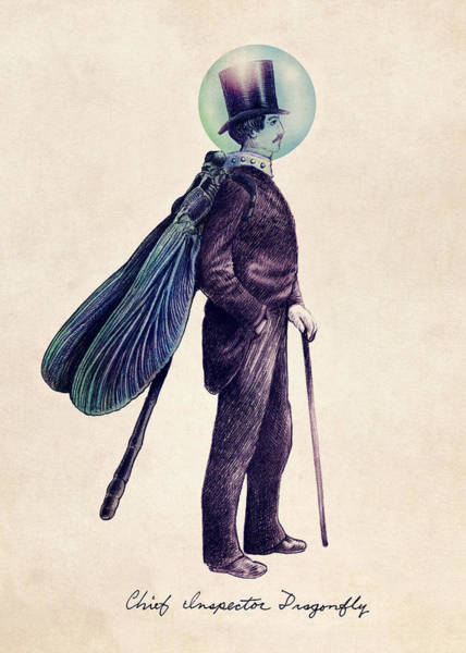 Vintage Wall Art - Drawing - Inspector Dragonfly by Eric Fan