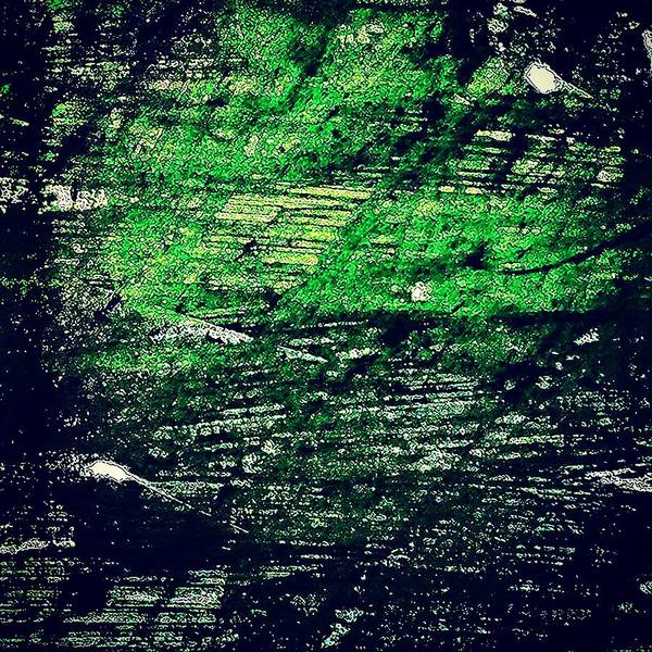 Acrylic Wall Art - Photograph - Abstract In Green by Jason Michael Roust