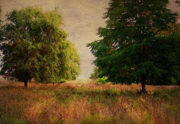 Photograph - Inspiration by Marilyn Wilson