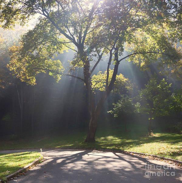 Inspirational Scene Sun Streaming Fog Square Art Print
