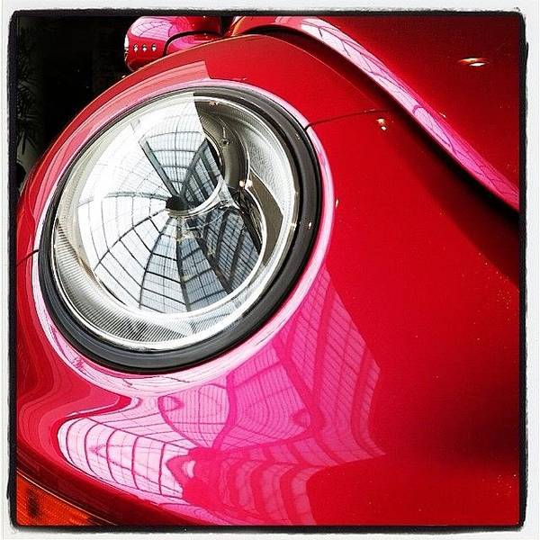 Pink Wall Art - Photograph - Barbie Beetle by Heidi Hermes