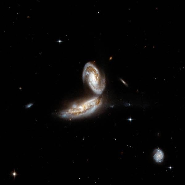 Interacting Galaxies Wall Art - Photograph - Interacting Galaxy Ngc 5331 by Stsci/aura/hubble Collaboration/a. Evans (university Of Virginia, Charlottesville;nrao;stony Brook University)/nasa/ Science Photo Library