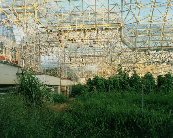 Ecosystem Photograph - Internal View Of Biosphere 2 by Martin Bond/science Photo Library