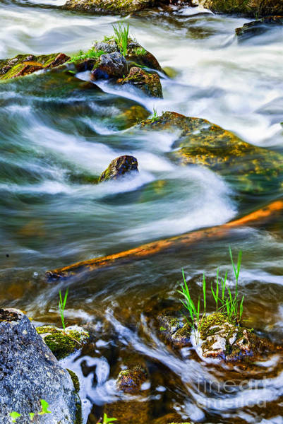 Wall Art - Photograph - Intimate With River by Elena Elisseeva