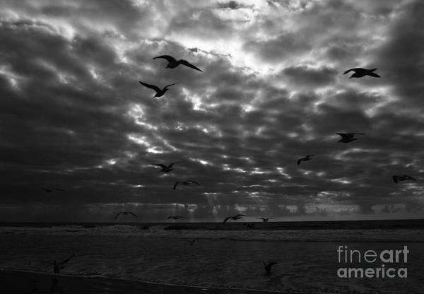 Photograph - Del Mar Light by John F Tsumas