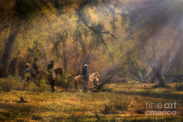 Wall Art - Photograph - Into The Light by Priscilla Burgers