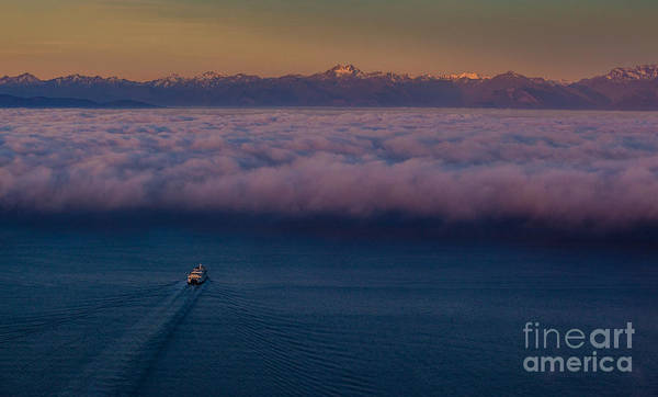 Seattle Skyline Photograph - Into The Mist by Mike Reid