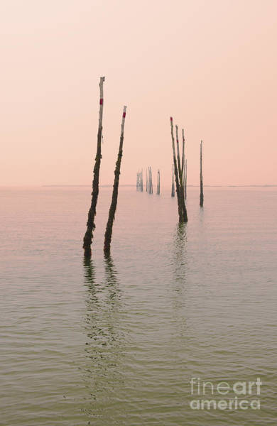 Wall Art - Photograph - Into The Pink Sunset... by Nina Stavlund