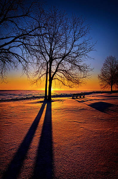 Park Bench Photograph - Into The Shadows Of Light by Phil Koch