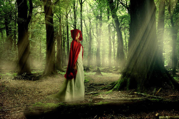 Red Dress Photograph - Into The Woods by Colin Anderson
