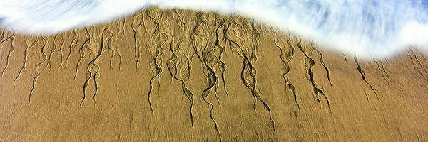 Baja California Peninsula Wall Art - Photograph - Intricate Pattern Created By Surf by Panoramic Images