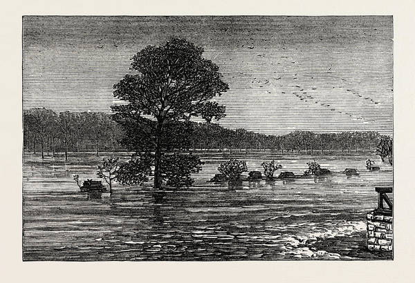 Early American History Drawing - Inundations In The United States Of America Cumberland River by American School