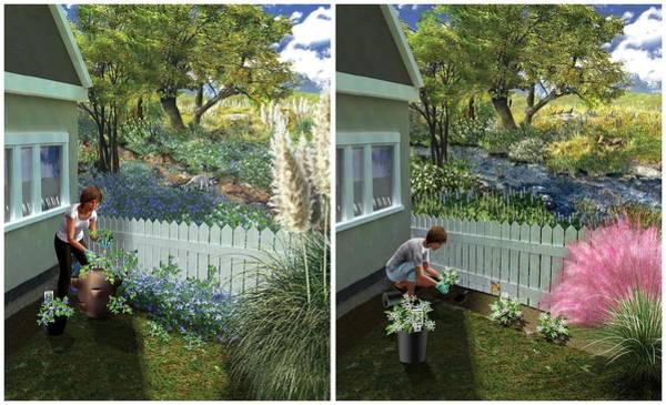 Jasmine Photograph - Invasive And Non-invasive Plants by Nicolle R. Fuller