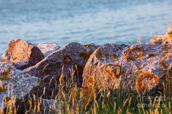 It Professional Photograph - Inverness Beach Rocks  by Iris Richardson