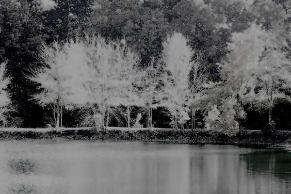 Photograph - Inverted Landscape by Lesa Fine