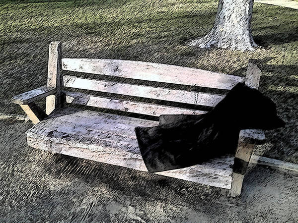 Park Bench Digital Art - Invisible Man - Homeless In America by Mark Weller