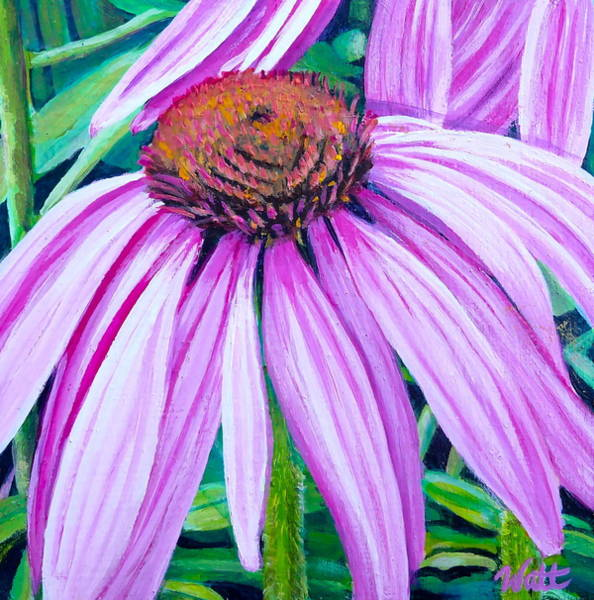 Osteospermum Painting - Invoke by Tammy Watt