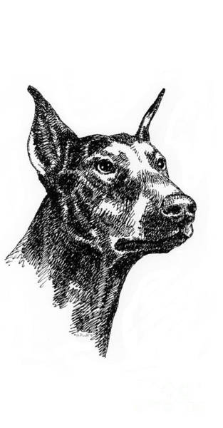 Drawing - iPhone-Case-Doberman by Gordon Punt