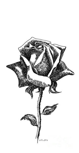 Drawing - iPhone-Case-Flower-Rose1 by Gordon Punt