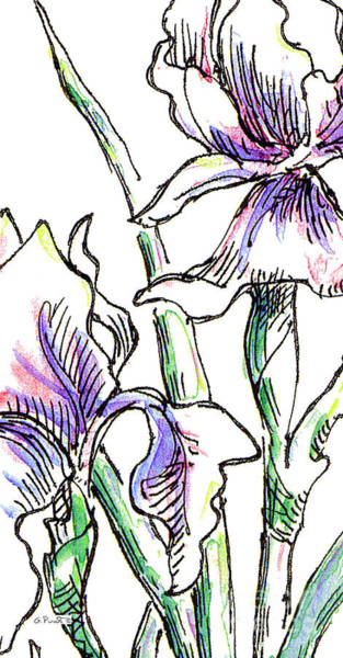 Drawing - iPhone-Case-Flowers-Iris2 by Gordon Punt