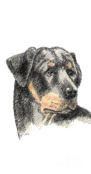 Drawing - iPhone-Case-Rottweiler by Gordon Punt