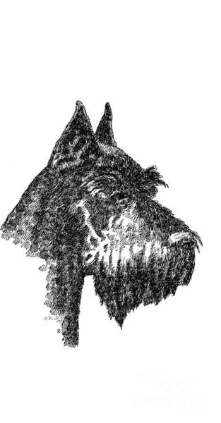 Drawing - iPhone-Case-Schnauzer by Gordon Punt