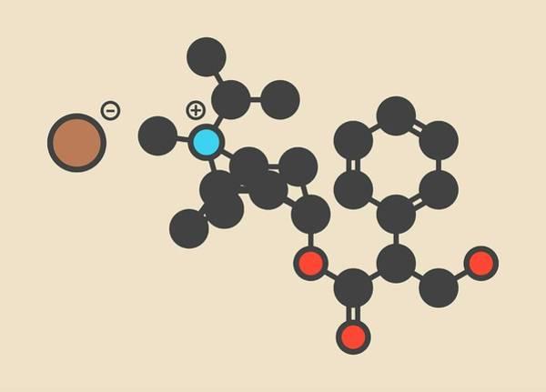 Bronchus Photograph - Ipratropium Bromide Asthma Drug Molecule by Molekuul