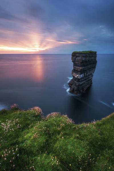 Flower Head Photograph - Ireland - Downpatrick Head by Jean Claude Castor